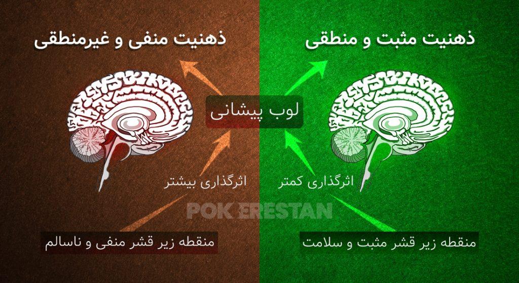 عملکرد مغز انسان